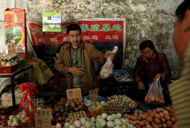 China Tainted Eggs 5310653