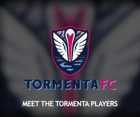 Meet the Tormenta logo