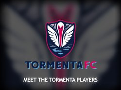Meet the Tormenta logo