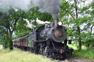 train and children