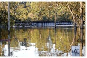 nc river.jpg