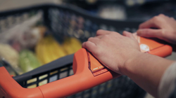 videoblocks-unrecognizable-female-hands-pushing-shopping-cart-in-grocery-store_s0g70vc4hf_thumbnail-full01.png