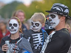 W skeletal family.jpg